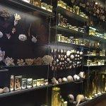 Photo of Natural History Museum (Luonnontieteellinen Museo)