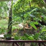 Foto de Giardino Tropicale