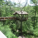 Tree house to overlook the gorge and park