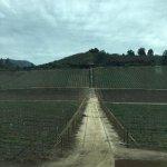 Foto di Chilean Wine Lovers
