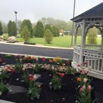Comfort Inn Saugerties Photo