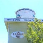 CJ Olson Cherries, Sunnyvale, Ca