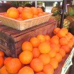 Oranges, CJ Olson Cherries, Sunnyvale, Ca