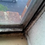 Bottom corner of windowsill. mildew and mold