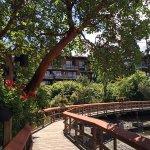 Brentwood Bay Resort & Spa Foto