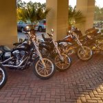 The car park full of Harleys. :)