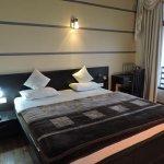 himalaya facing luxury room
