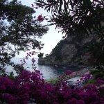 Spiaggia del Fornillo Foto