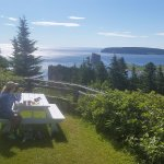 Picnic table with a view on property