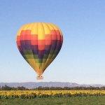 Photo de Napa Valley Balloons, Inc.