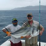 William's Rooster Fish