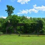 Foto de Wharton State Forest
