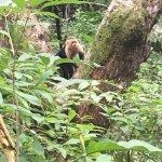 Curu National Wildlife Refuge Foto