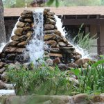 Canyon Ranch in Tucson Foto