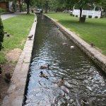 Foto Lititz Springs Park