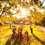 A beautiful Fall in Williamsburg
