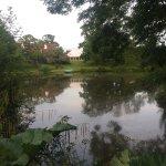 Newnham Farm照片