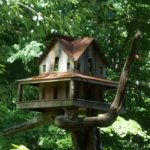 The Buck House Inn on Bald Mountain Creek Foto