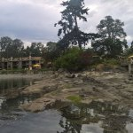 Galiano Oceanfront Inn and Spa Picture