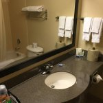 BEST WESTERN PLUS Burlington Inn & Suites Foto