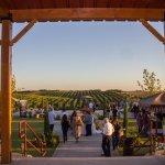 Toca Winery in Madera, California. Photo by Kim Lawson