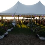 Our farm is a unique natural setting to host your event.