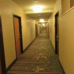 The long halls.
