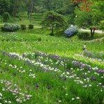 Ijimino Park