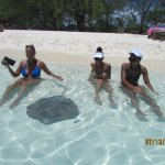 Stingrays want attention from you and will stop for pictures!