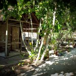 wooden bungalows inmerse in a nice garden in one of the best beach of kri Island