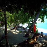 Beautiful Garden and quite beach with cristalline water and amazing snorkeling from the shore
