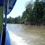 Foto de Tambopata Research Center