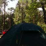 Upper Pines Campground Picture