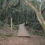 Pour passer de l'autre cote il faut emprunter ce pont et guet sur l'huveaune