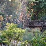 Tharnthong Lodges Foto