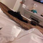 Foto de Qualys Hotel & Spa Vannes