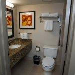 Photo of Holiday Inn Austin Midtown