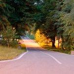 Bike lanes/trails