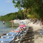 Foto de Hilton Key Largo Resort