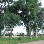 Horse shoe pits and shade trees