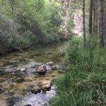 Camping muy tranquilo y rodeado de naturaleza, si es lo que buscas te lo recomiendo 100%