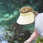 hand feeding the turtles at rehab centre. snockelling and swimming options  available . 5 min  w