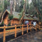 Photo of Disney's Cabin