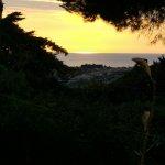 Le Rondini di San Bartolo Foto