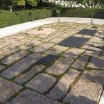 tumba de Kennedy y Flia