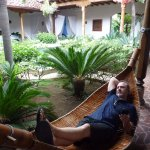 hammock in the oasis