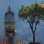 Casa Cinco Patios Photo