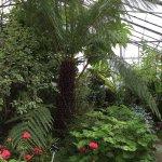Myerscough College Plant World