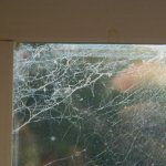 These were layers and layers and layers of spiderwebs in all windows