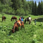 Moose Mountain Horseback Adventures - Day Tours